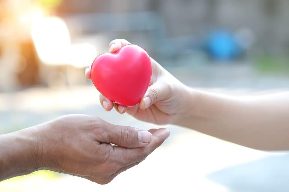 Todas las donaciones con Bizum suman para ayudar a la población de La Palma